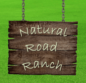 Natural Road Ranch logo projekt